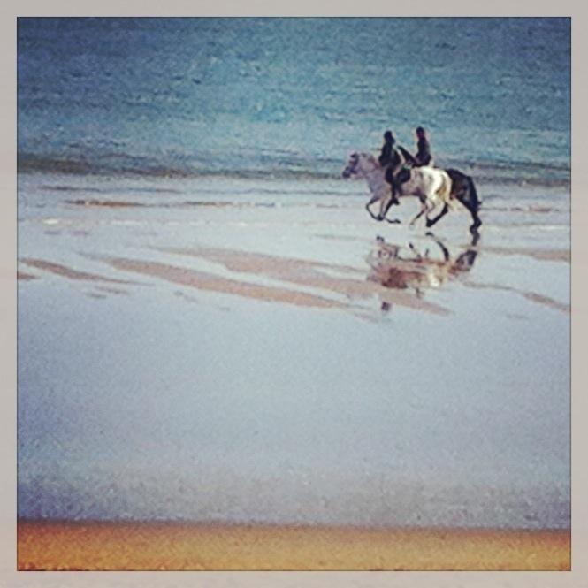 Balade à cheval à la Baule à marée basse