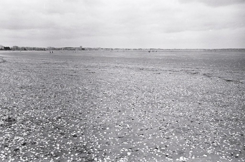 La baie de la Baule à marée basse