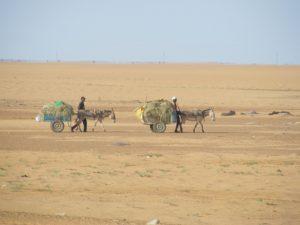 Deux hommes travaillant au Niger, l'un des pays les plus pauvres