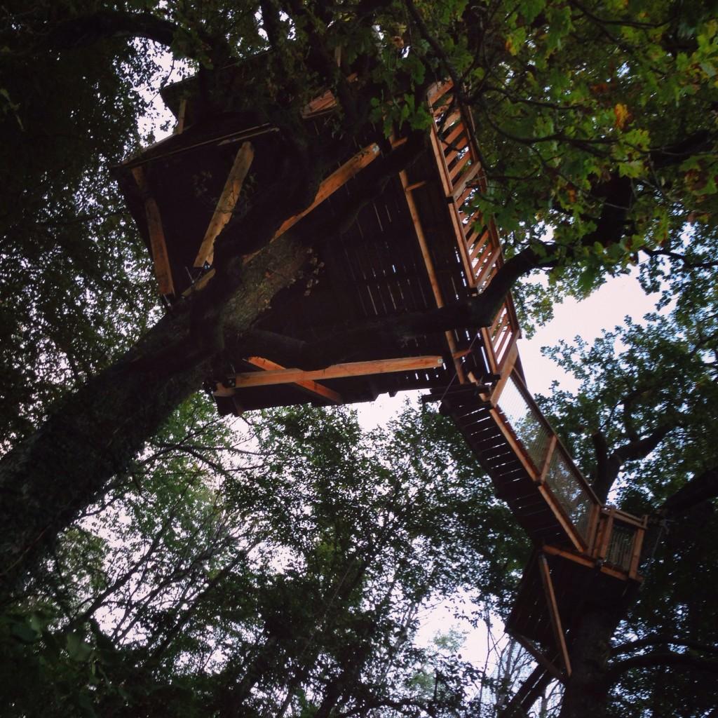 Une petite maison dans les bois