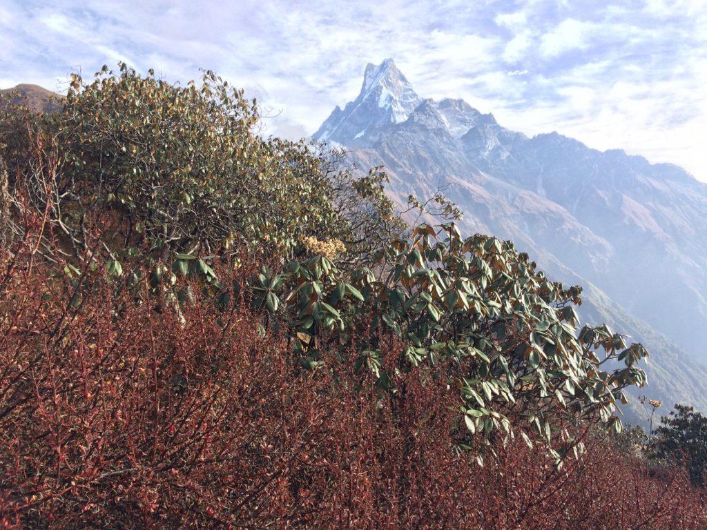 Balade sur les très hauts contreforts de l'Himalaya, la plus haute chaîne de montagne du monde