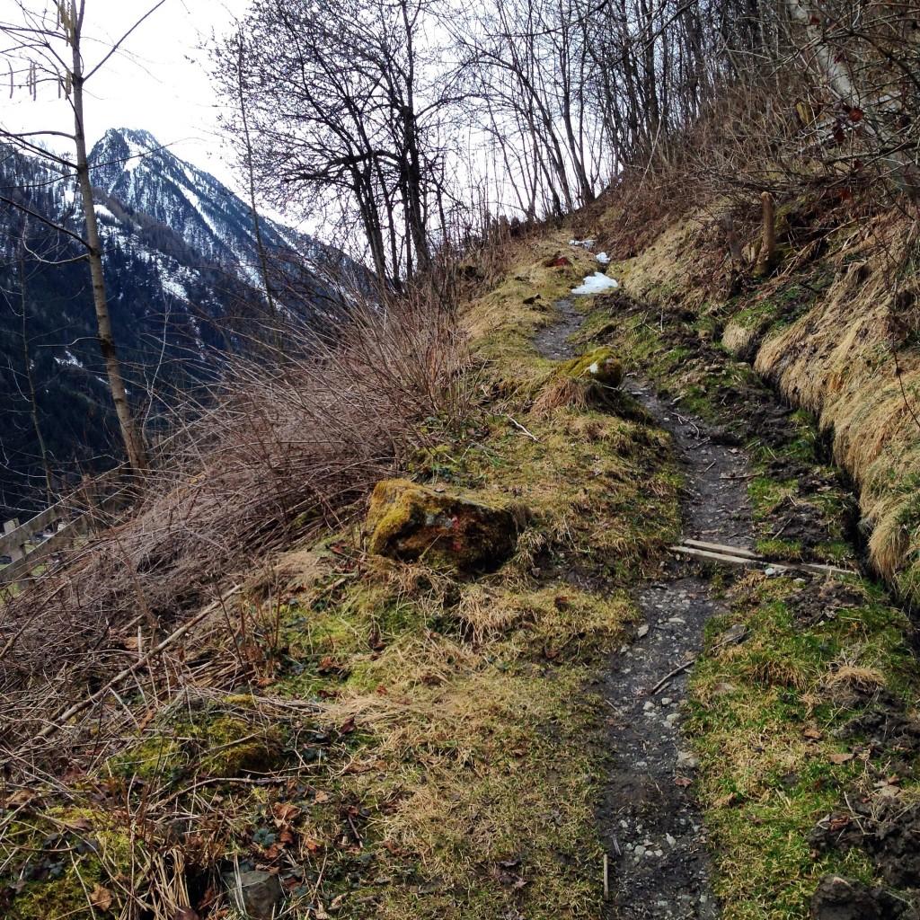 Le Tyrol à 1200 mètres d'altitude, le lieu rêvé pour pratiquer la randonnée en pleine nature