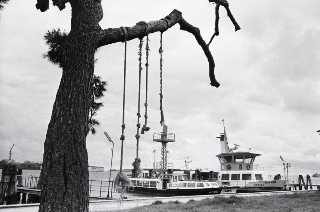 Des cordes à noeuds dans un parc à Venise