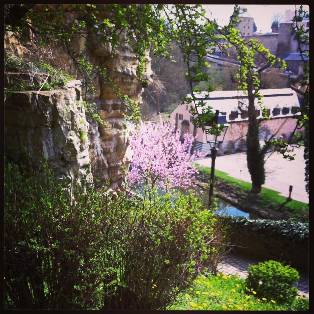 Le printemps au Luxembourg