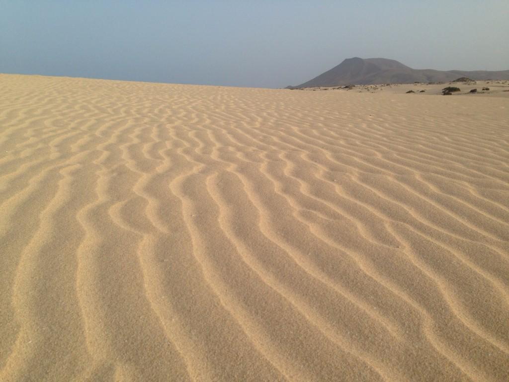 Les longues dunes de sables du Nord de l'île de Fuerteventura