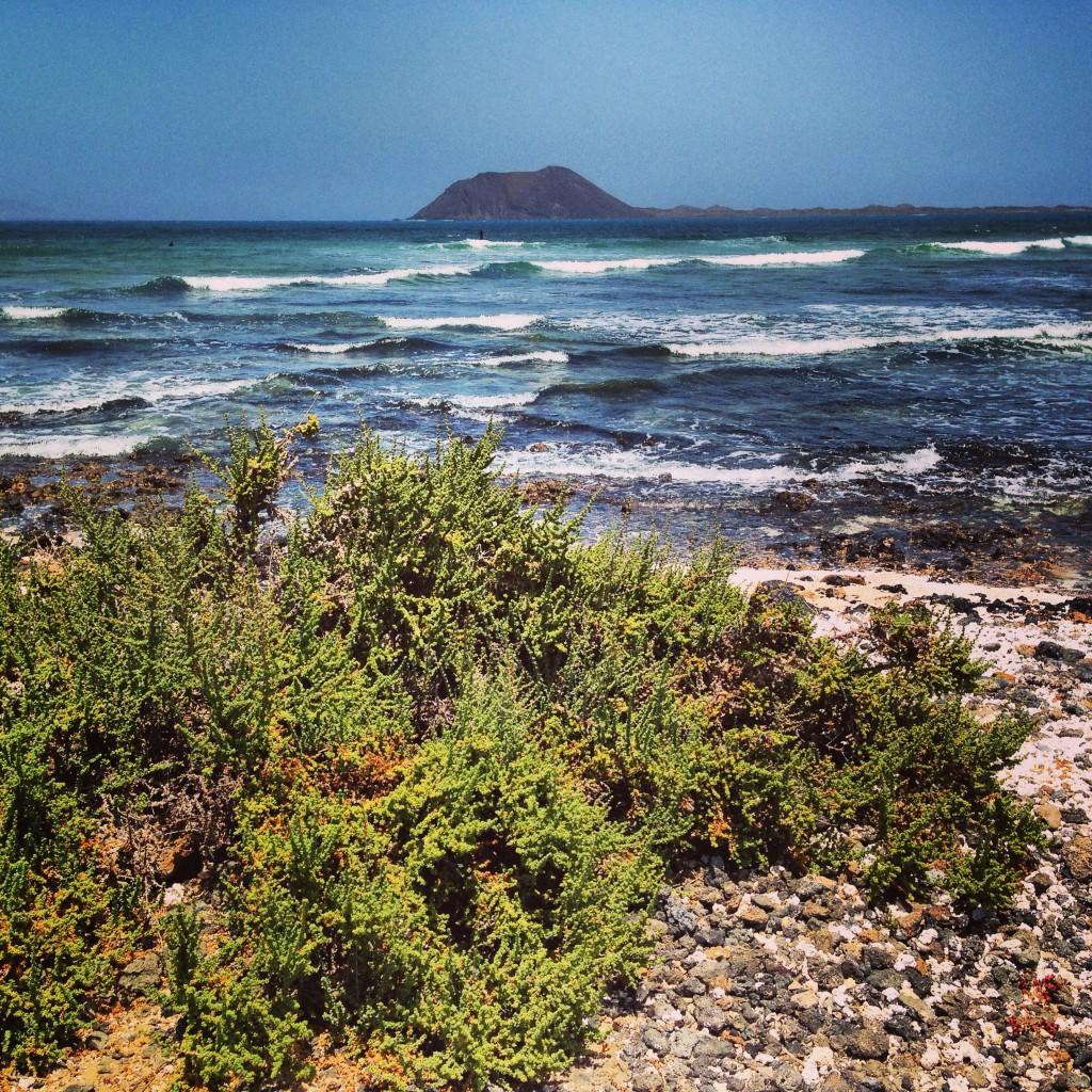 Vue sur l'île de Lobos