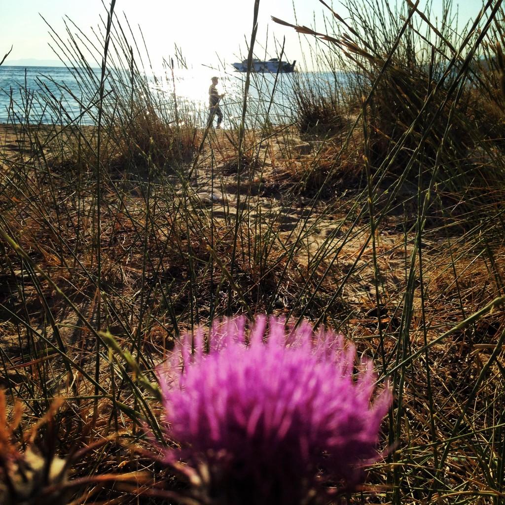 Un printemps de plus ou de moins, qu'importe nous sommes à Mykonos
