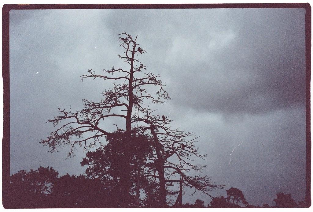 78. Un ciel d'orage en Finlande