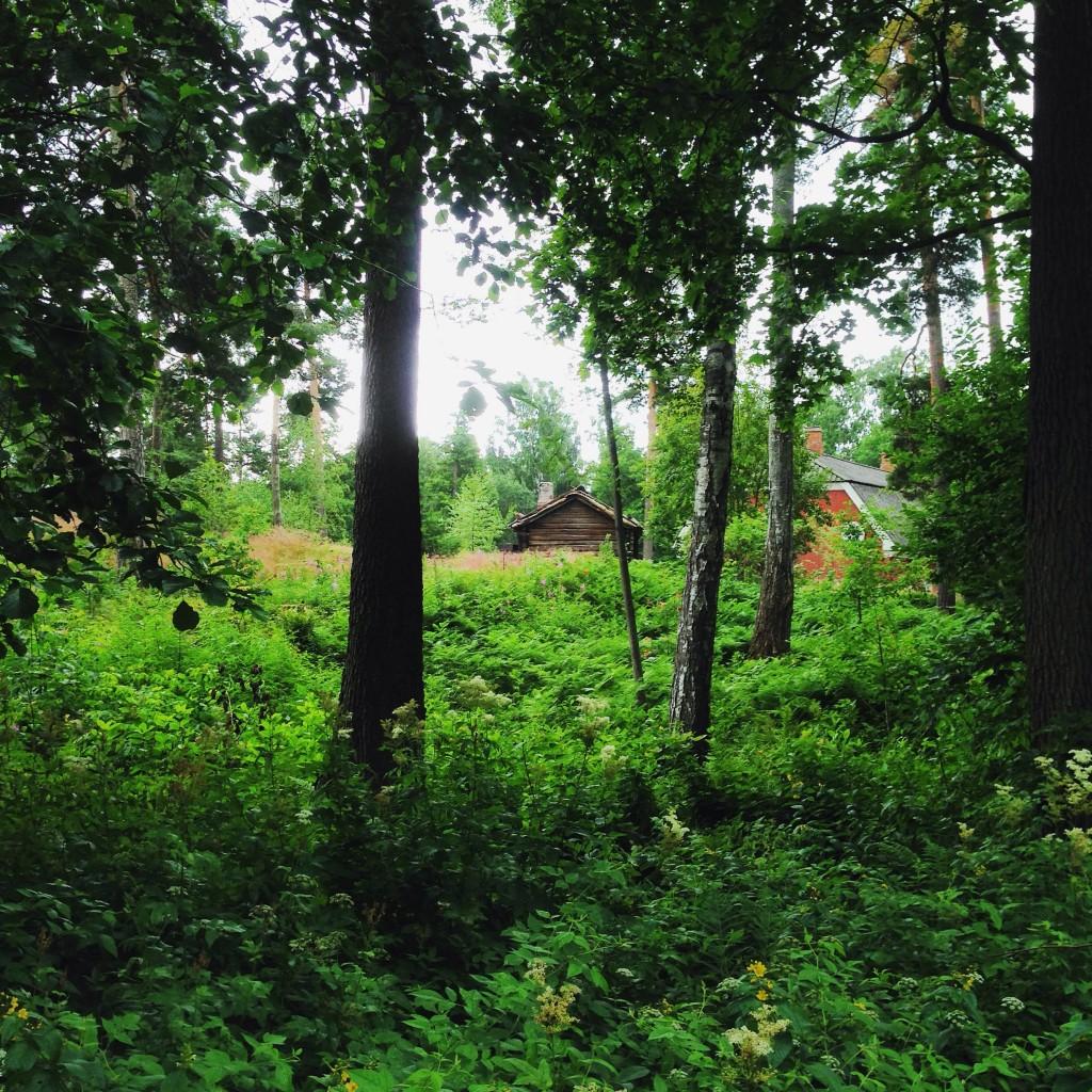 34. Des maisons traditionnelles dans une forêt finlandaise