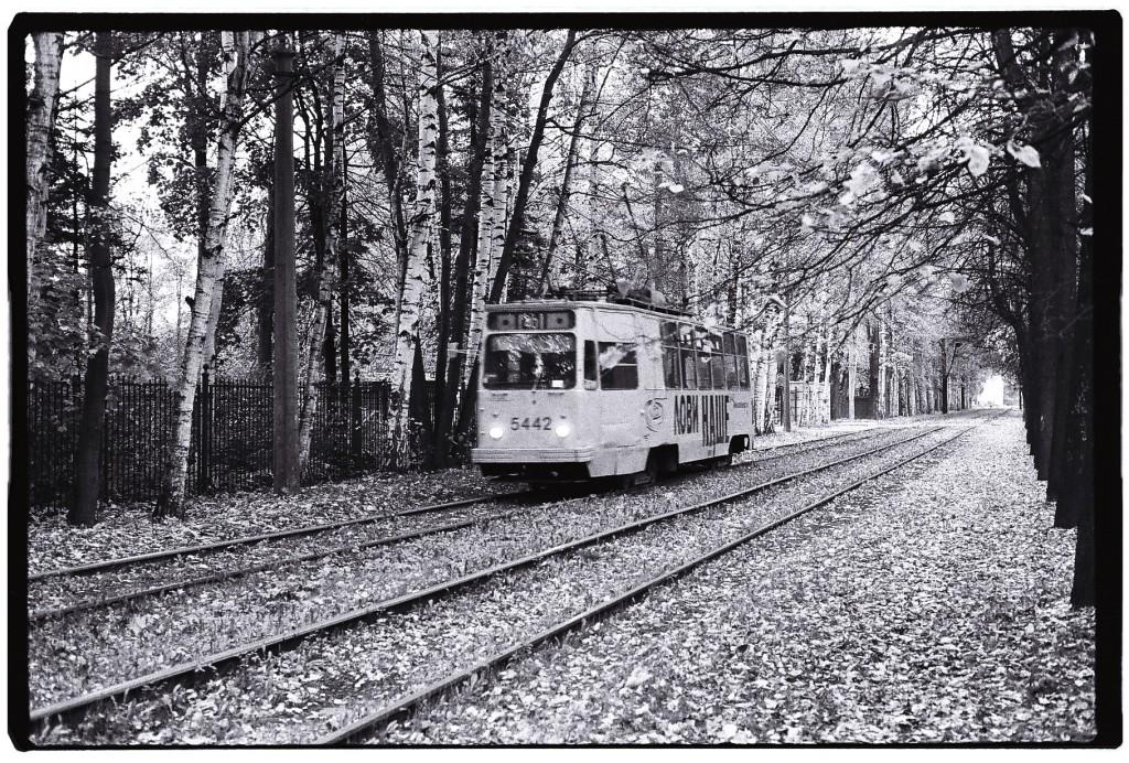 Un tramway roule sur l'automne