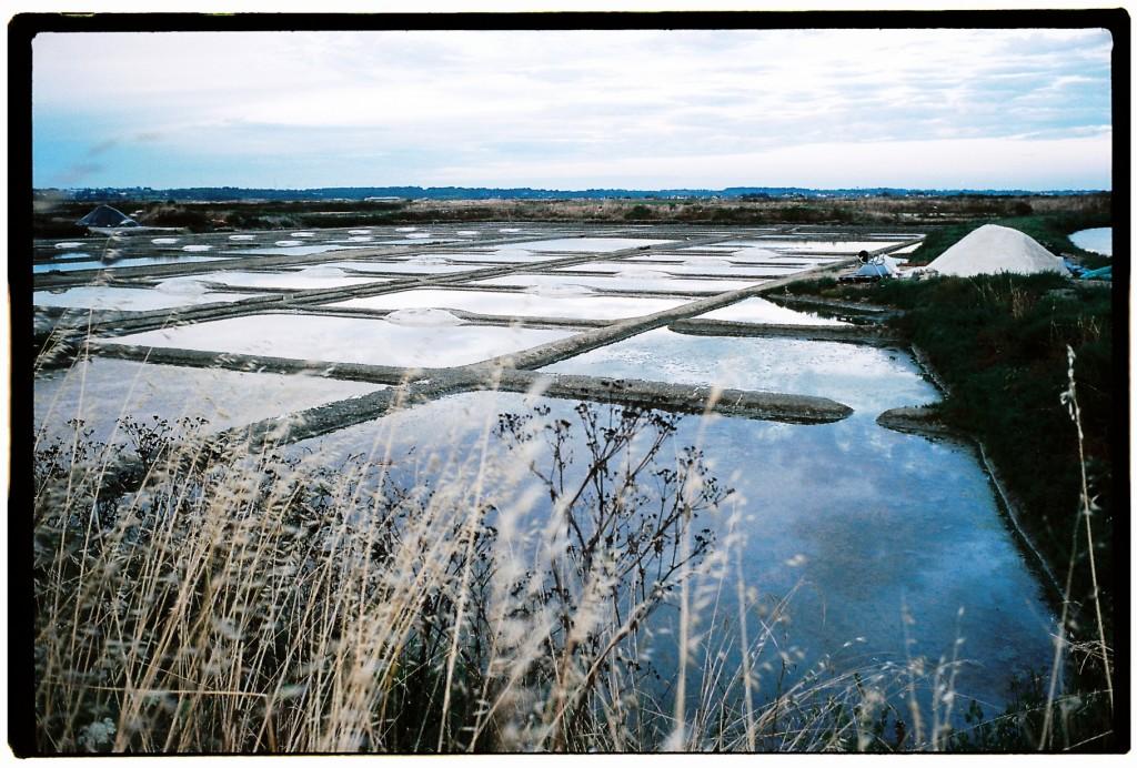Dans les terres, les marais salants de Batz sur Mer