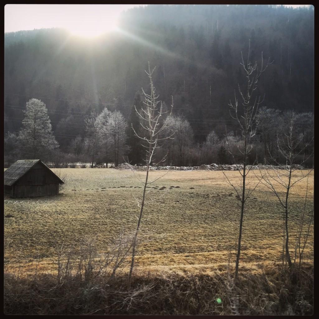 La campagne slovène entre Bled et Bohinj