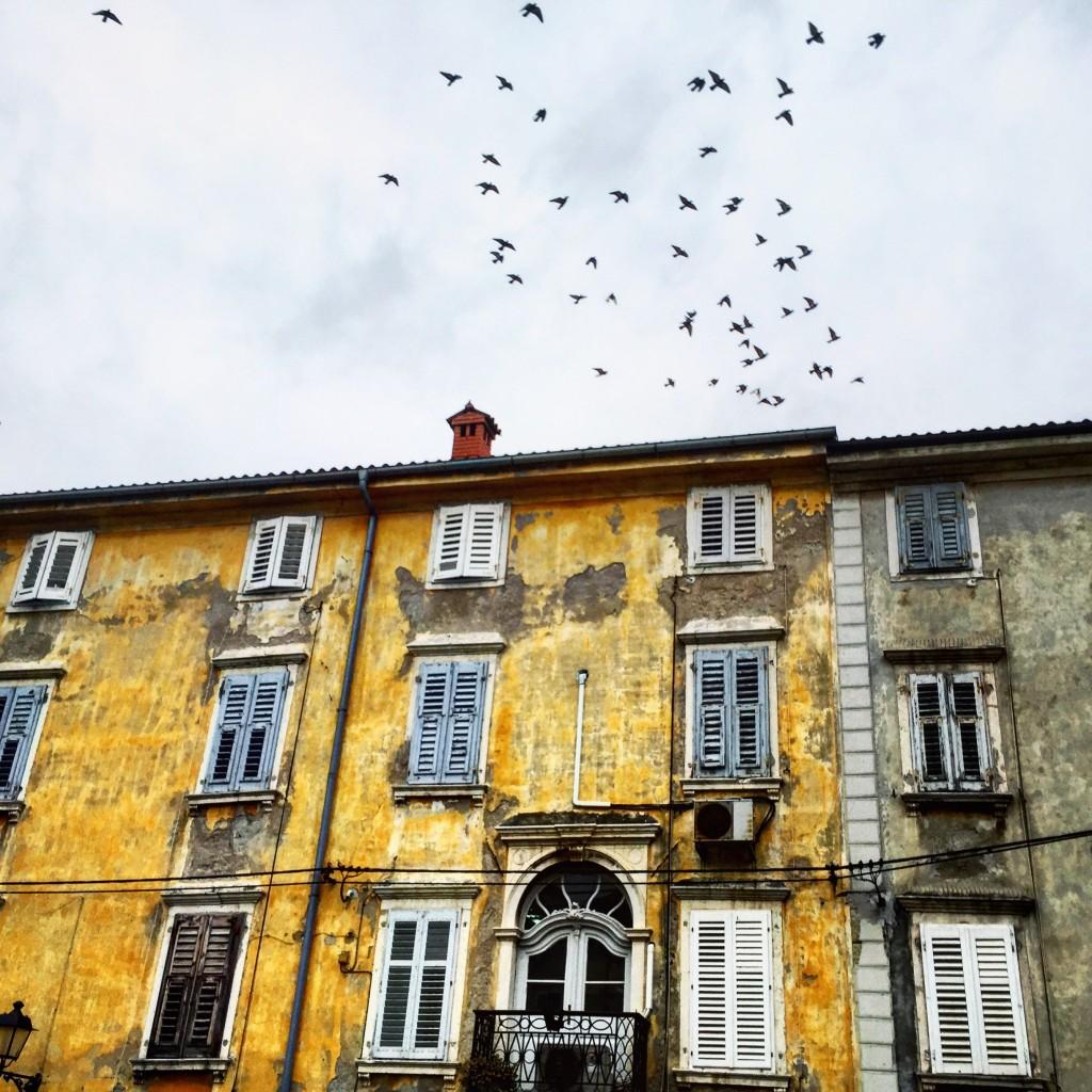 Piran une ville slovène aux accents croates et italiens
