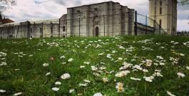 Les plus beaux châteaux forts de France