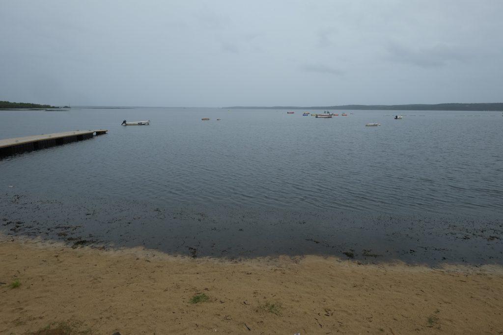 Le lac de Biscarosse et de Parentis
