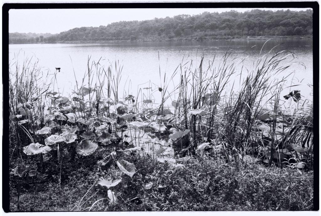 """Le parc du Lac de Sable, le """"Shahu"""""""