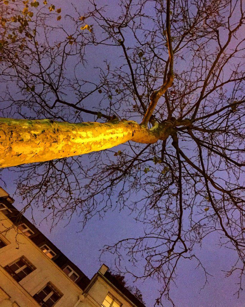 Ça y est c'est l'hiver à Paris