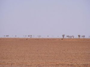 Le désert à Arlit au Niger une zone où des français se sont fait enlevés par des terroristes...