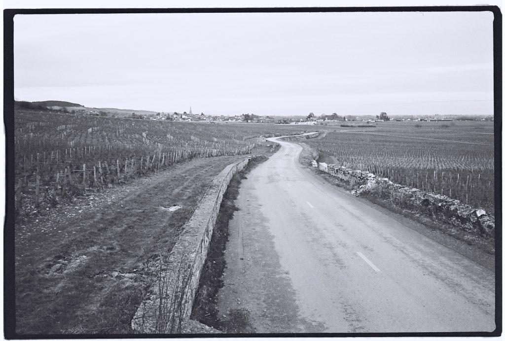 Sur la route des Grands Crus de Bourgogne en hiver