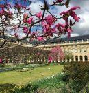 Les photos du printemps à Paris