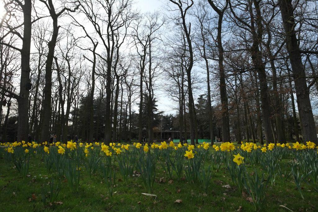 Le parc floral entre deux saisons