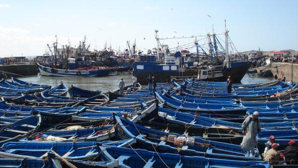 Le très joli port d'Essaouira au Maroc