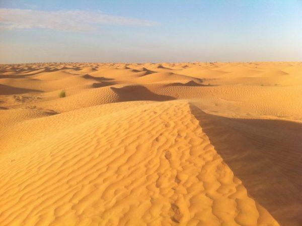 Les dunes du désert du Sahara en Tunisie