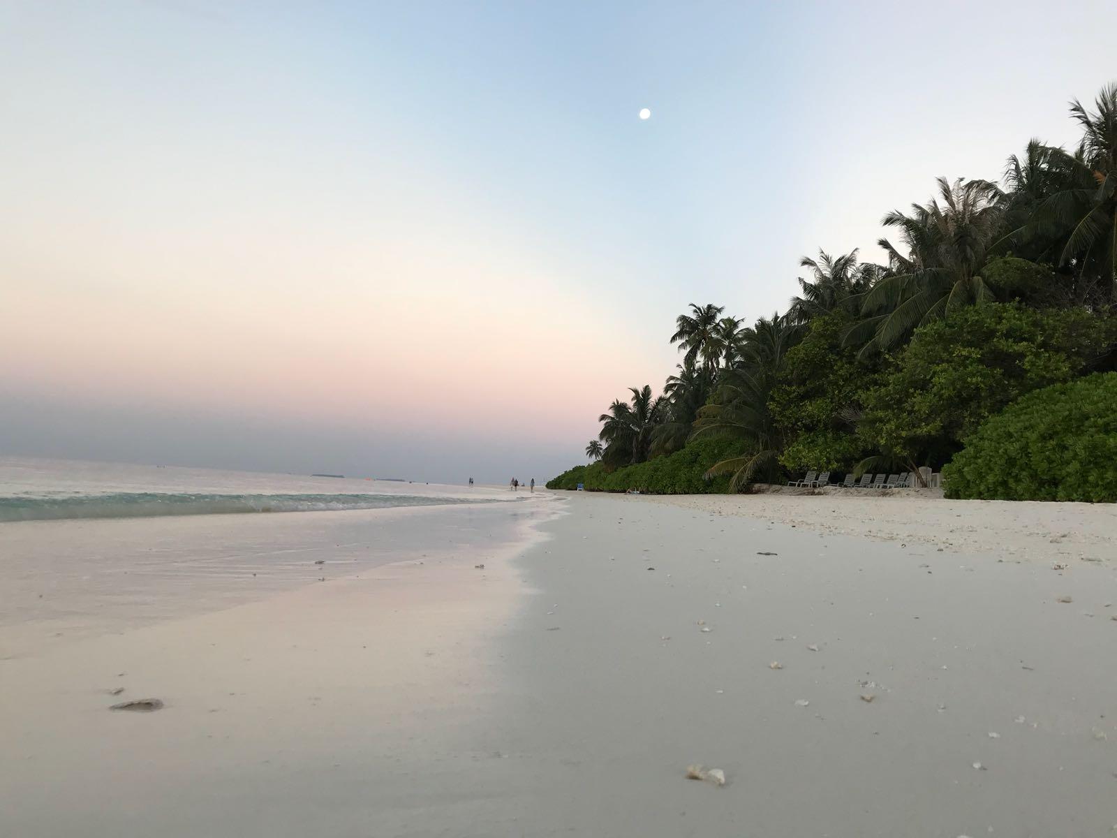 Une fin de journée paisible sur l'une des nombreuses îles des Maldives