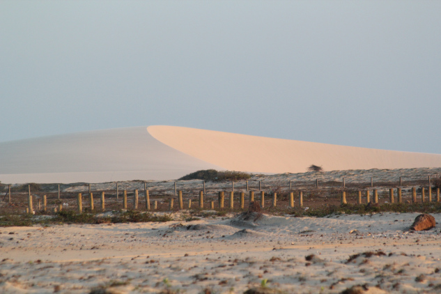 Des dunes a perte de vue