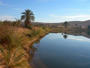 La Libye, l'un des pays les plus corrompus du monde
