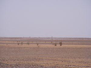 Un paysage au Niger