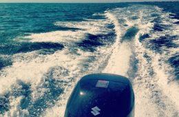 6 heures en mer à bord d'un zodiac