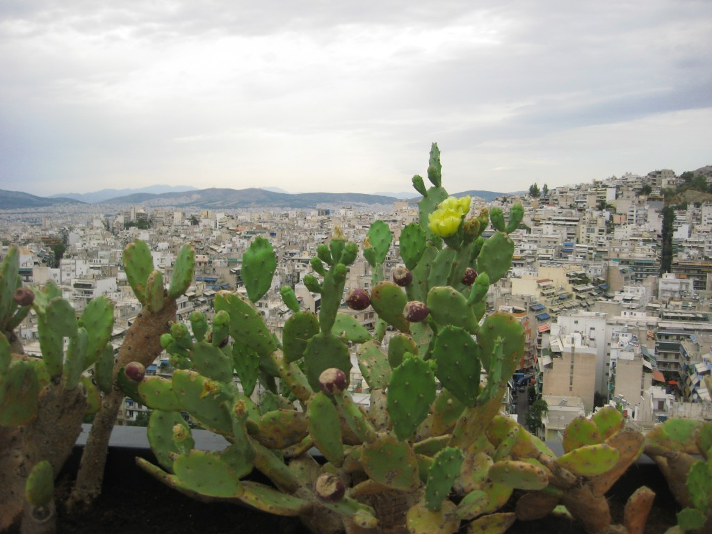89. Vue sur la capitale grecque depuis la colline de Lycabette