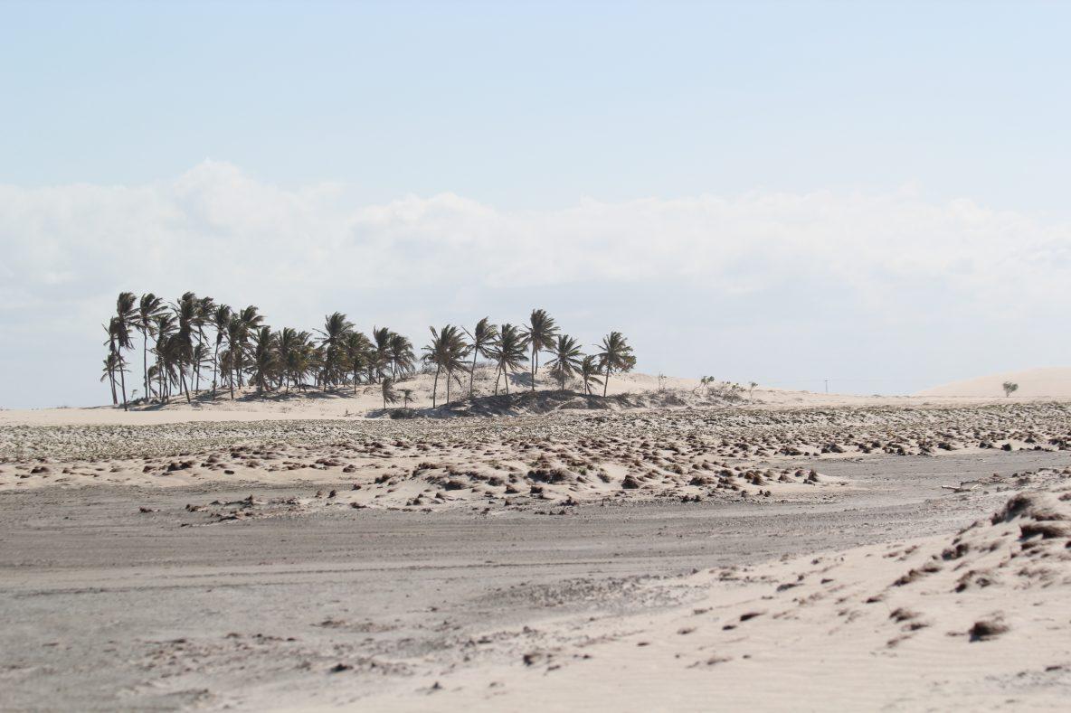 Un paysage désertique dans le Nord Est du Brésil