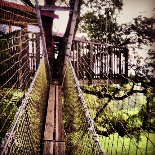 Une magnifique vue depuis un pont de singe