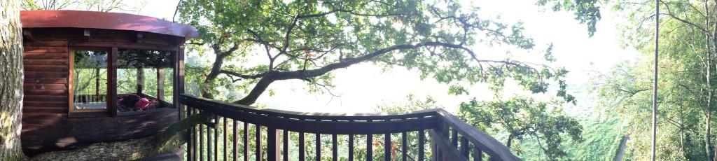 Vue panoramique depuis le haut d'un arbre