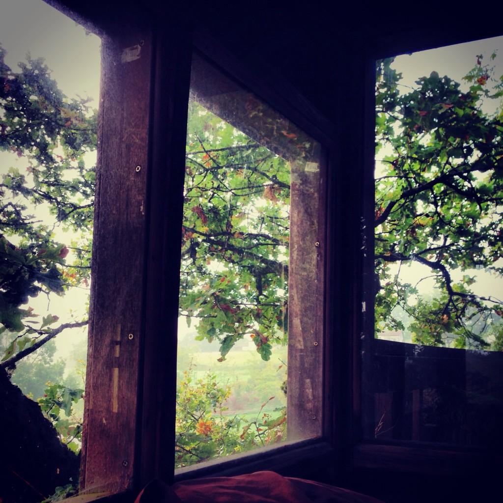 Splendide vue depuis une cabane dans les arbres