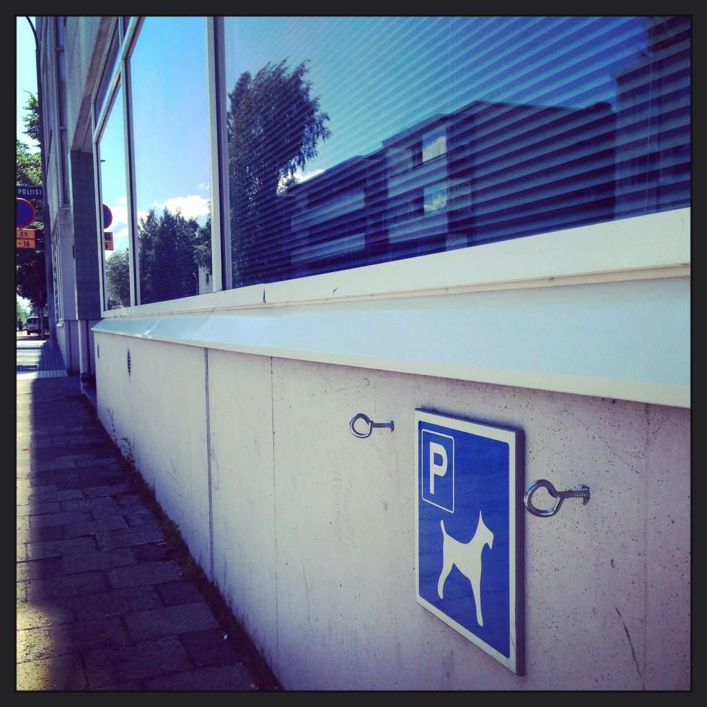 Parking pour chiens en Finlande