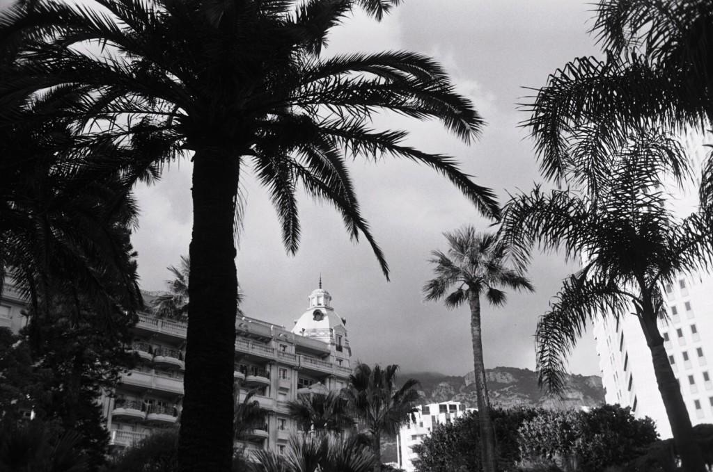 Monaco sous les palmiers