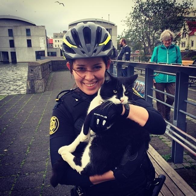 une policière islandaise avec un gentil chat