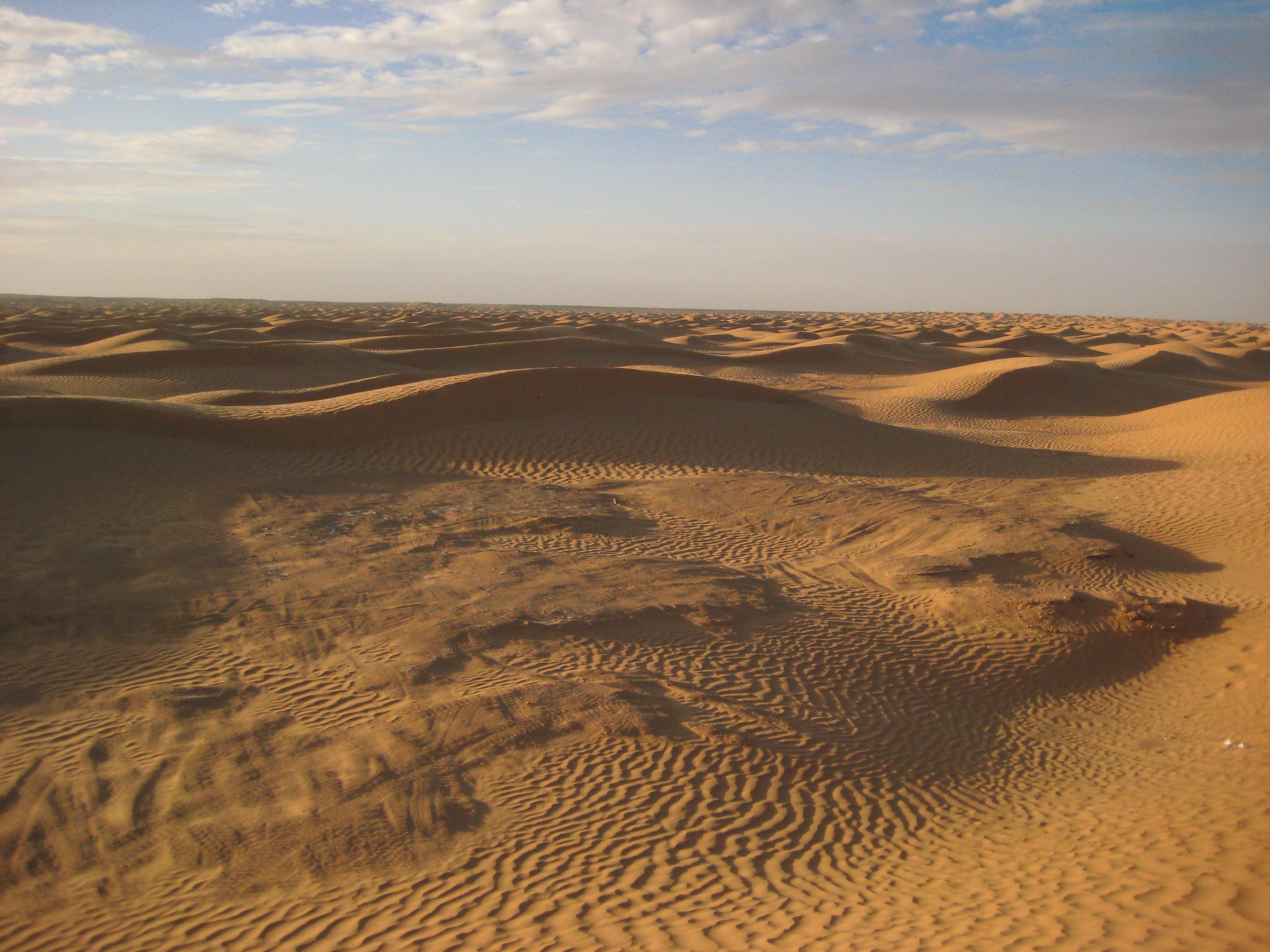 Les dunes du SAHARA, en Tunisie