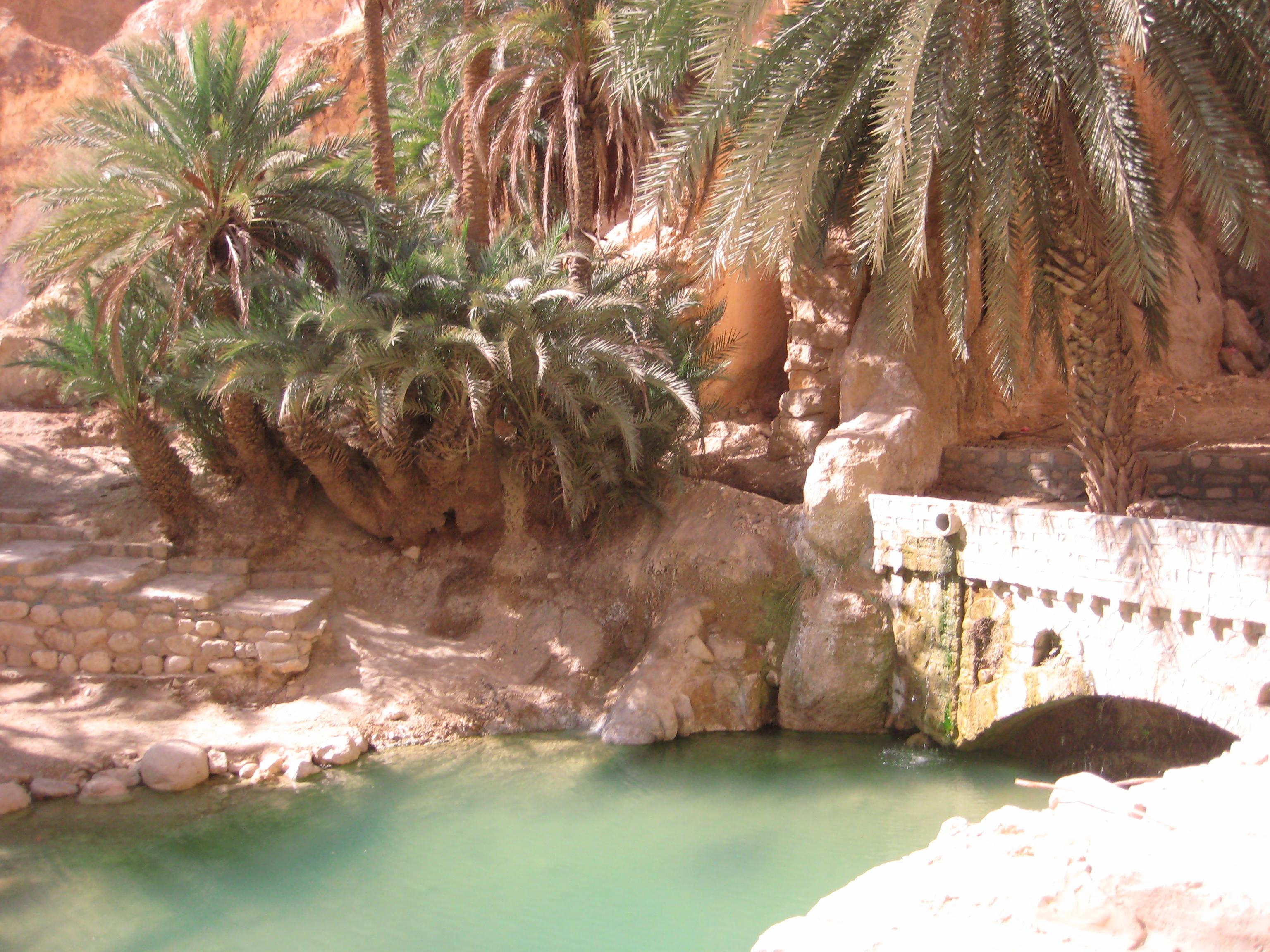 une oasis irréelle en Tunisie