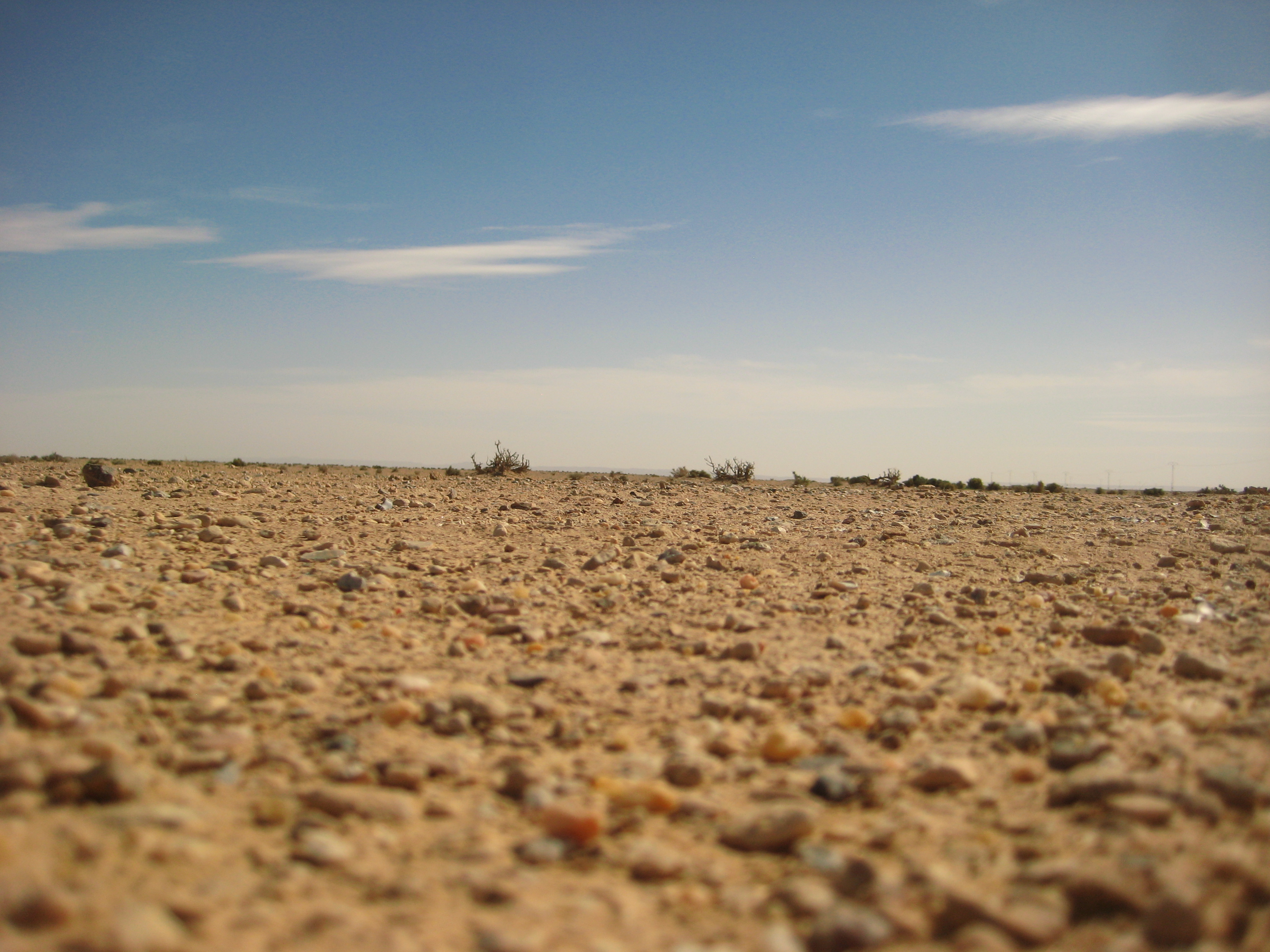 Une terre aride, le Sahara n'est plus très loin