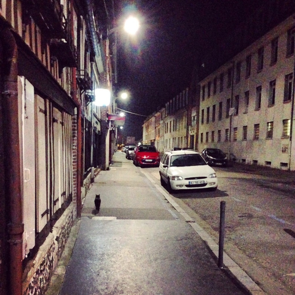 La nuit j'erre dans les rues normandes