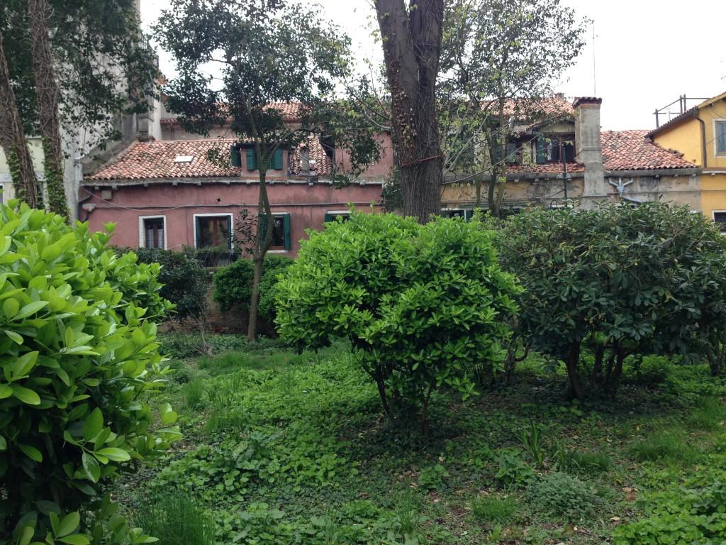 37. De trop rares espaces de verdure à Venise