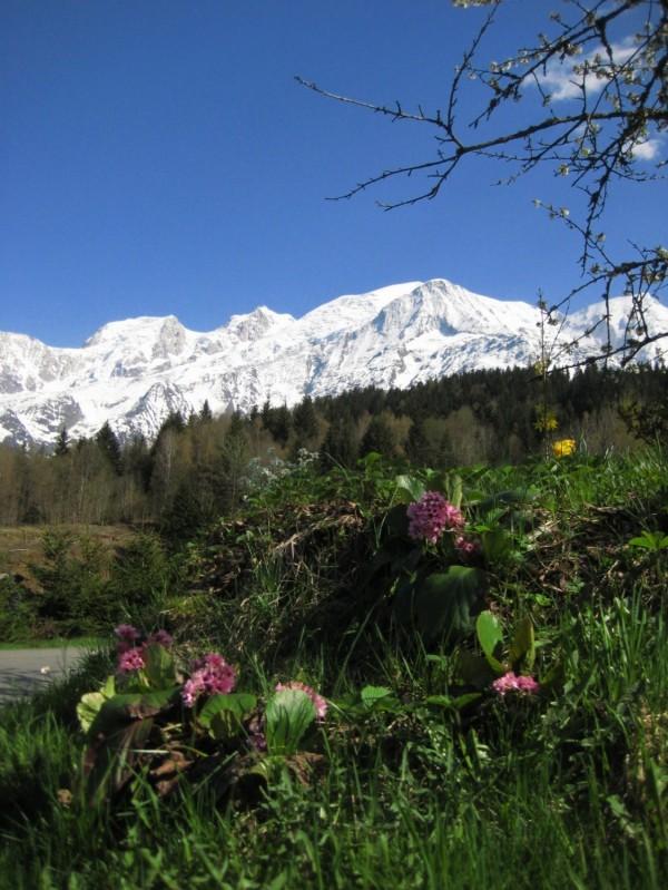 Le printemps dans les alpes françaises, vallée de Chamonix