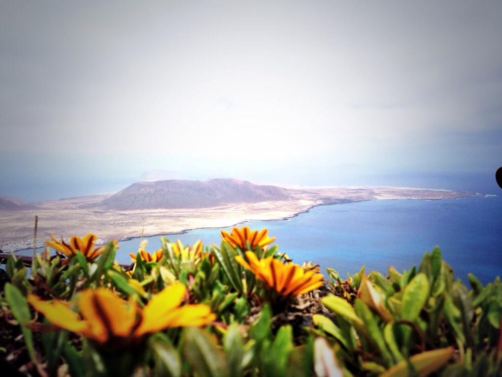Printemps sur l'île de Lanzarote aux Canaries