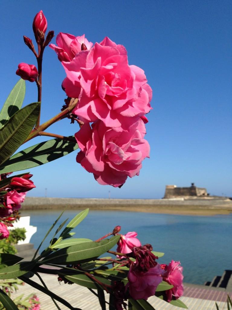 Vue sur la forteresse du port d'Arrecife