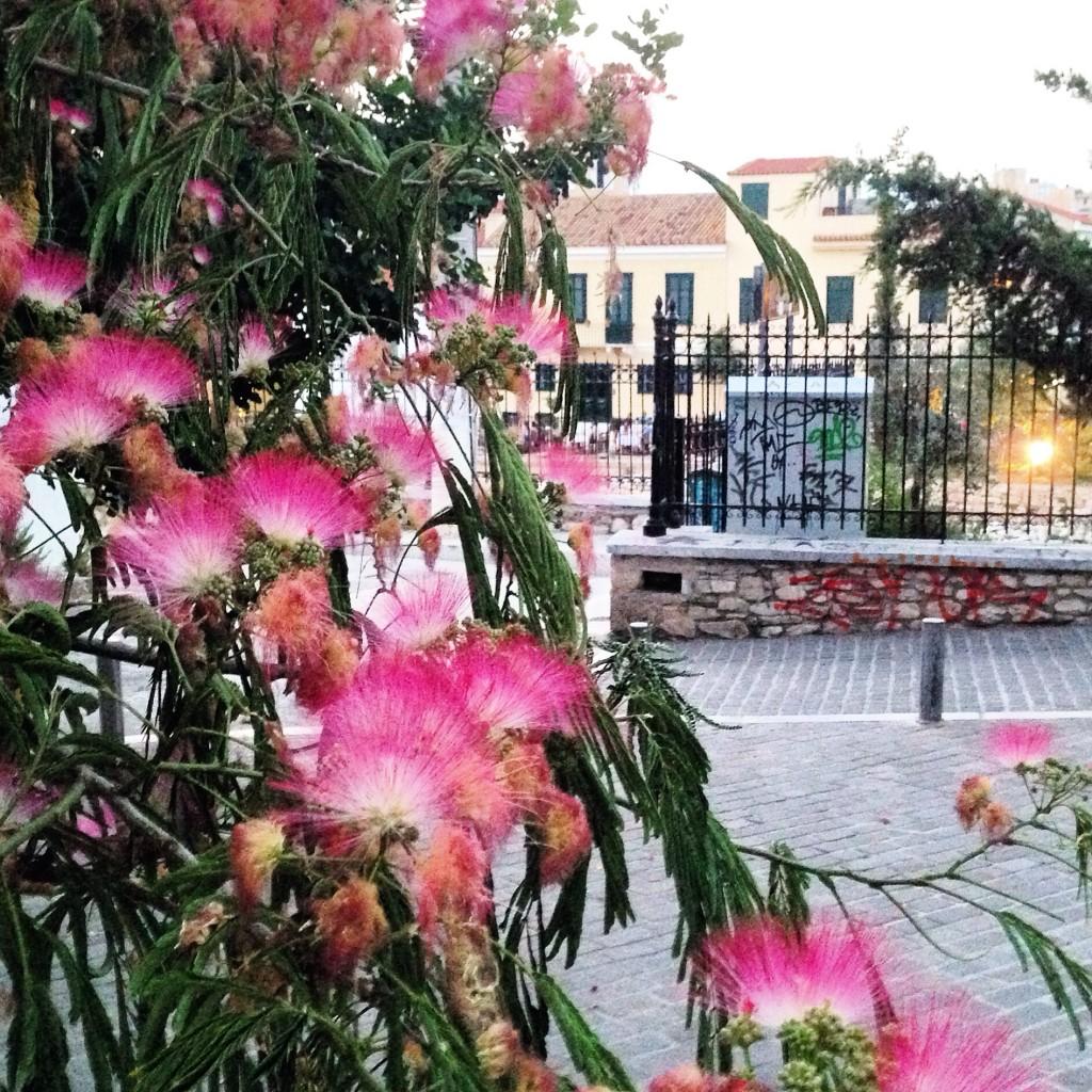 Une petite place tranquille à Athènes en fin de journée