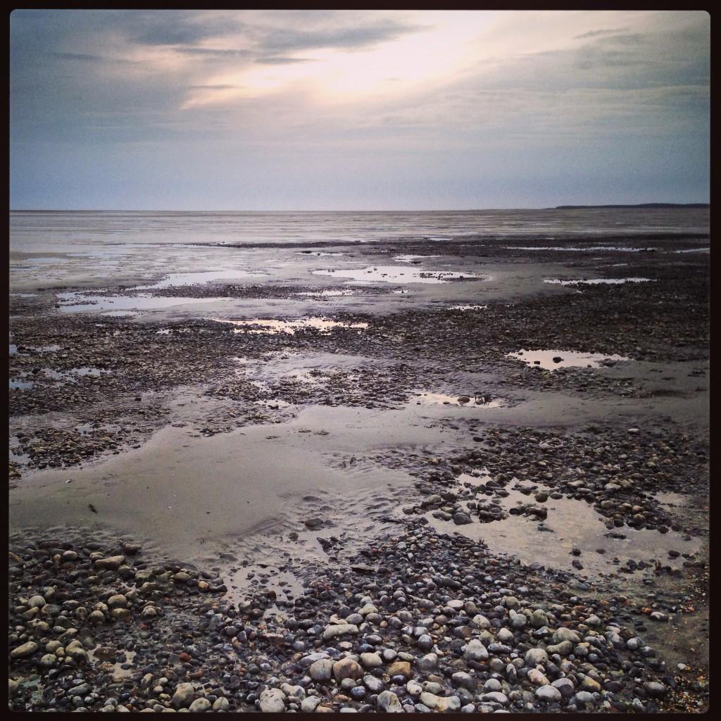 Marée basse en baie de Somme